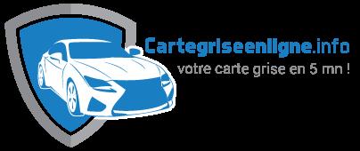 cartegriseenligne.info